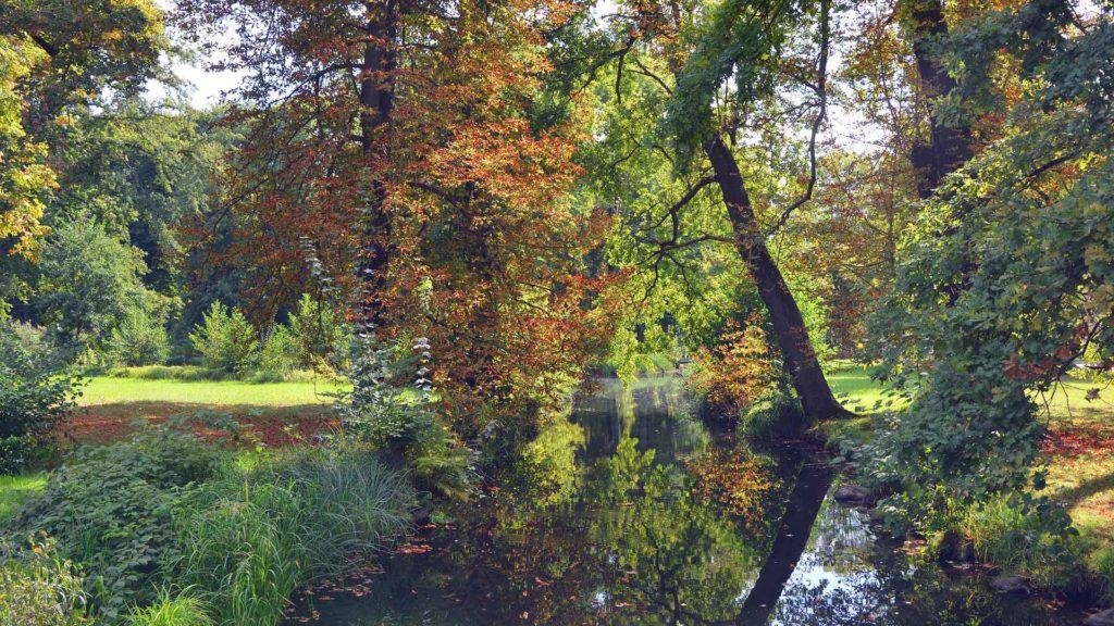 Imagen Bosque de Spreewald de Lübbenau en Alemania. Cicerone Plus